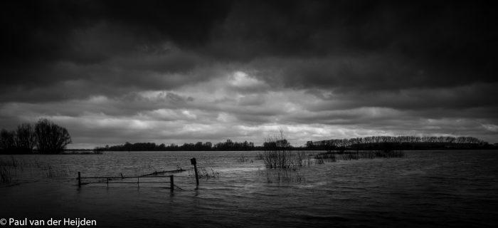 Hoogwater in de Waal