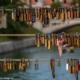 Slagersbrug Ljubljana